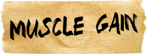 muscle-gain